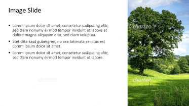 Placeholder text with image of a tree on a meadow