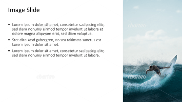 Placeholder text with image of surfer on a wave