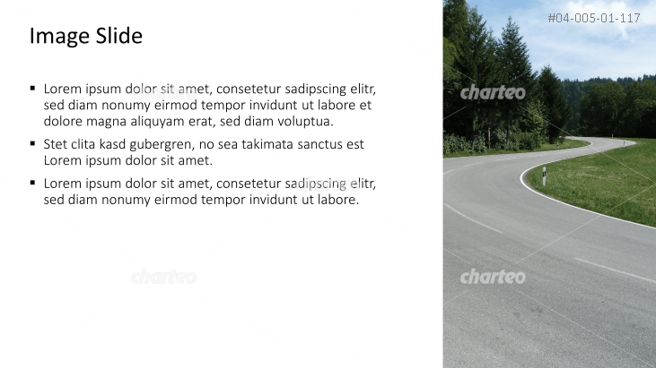Placeholder text with image of a road through forest