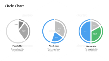 Three pie charts with differently proportioned segments