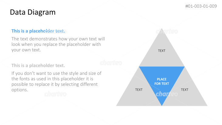 Four-part triangle diagram with text placeholders