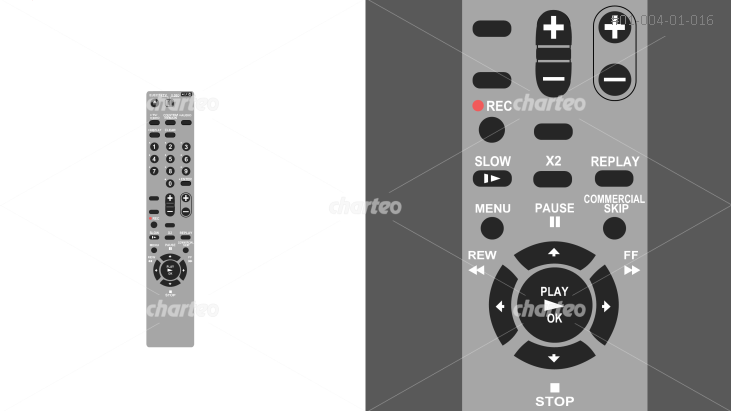 Grey remote control for playback device