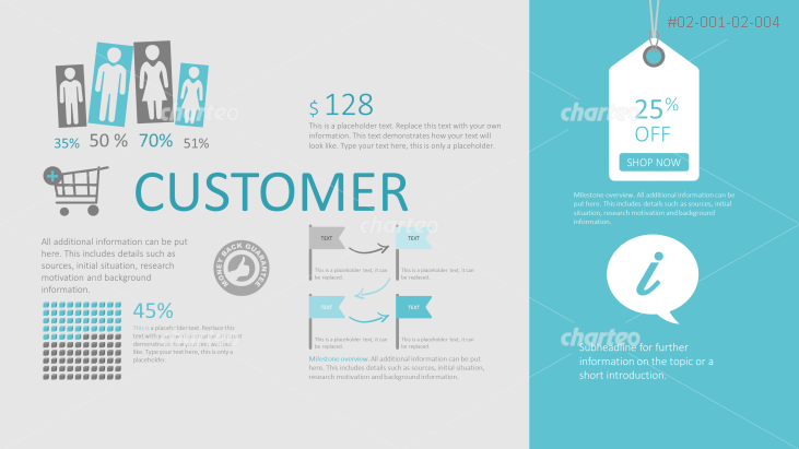 Customer infographic for sales application