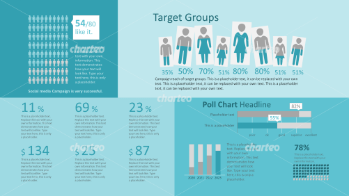 Target group infographic with column charts and  persona pictograms