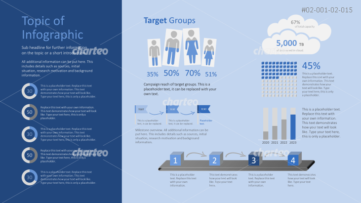 Infographic elements for a target group analysis