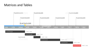 Year-round Gantt chart with project descriptions above