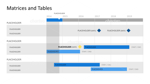 Gantt chart with year timeline and task list