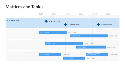 Gantt chart with year timeline and milestones