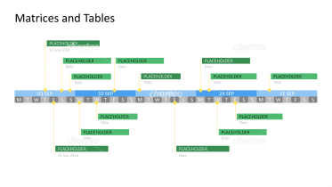 Week day timeline Gantt chart with project descriptions