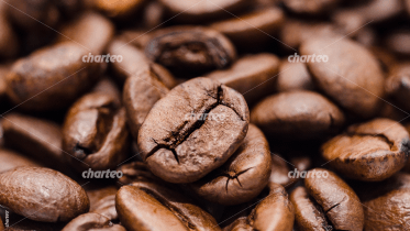 Heap of brown coffee beans